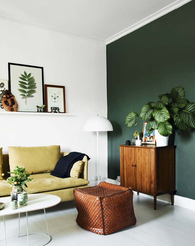 dark-green-accent-wall-via-@citysage