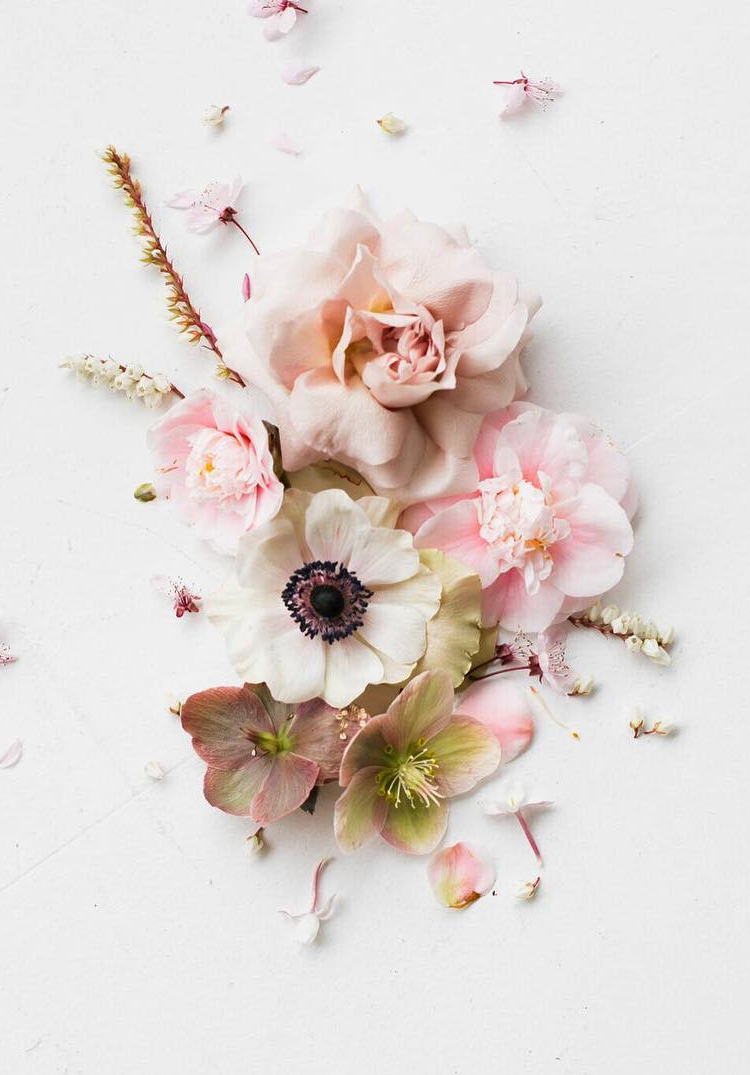 flower collage with roses via @citysage