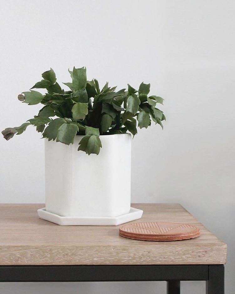 Simple modern home goods from everything ren anne sage for Minimalist home goods
