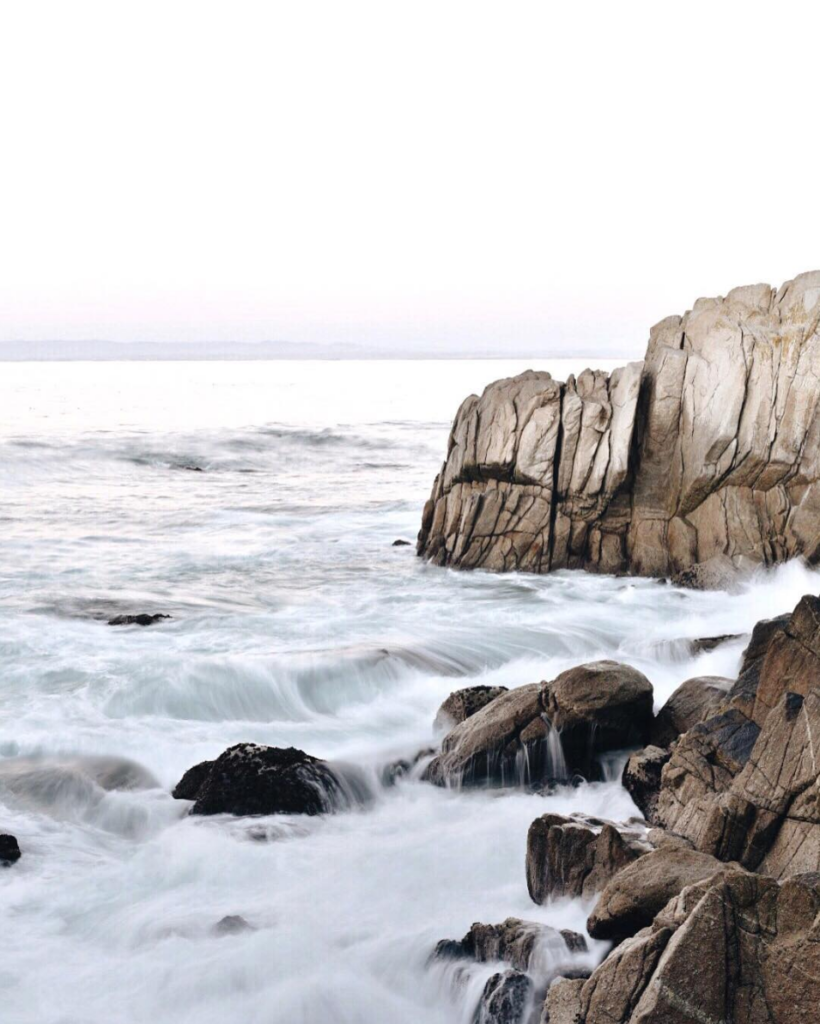 pacific grove coastal shoreline // anne sage