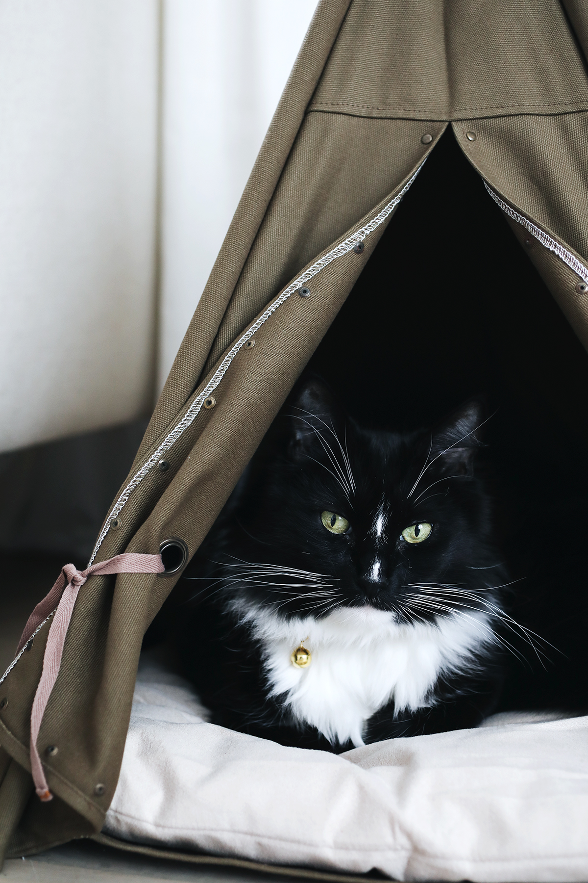 cat teepee from tuft + paw